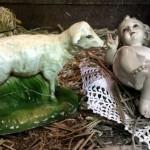 4 Broken Lamb